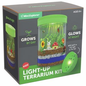 Mini Explorer Light-up Terrarium Kit